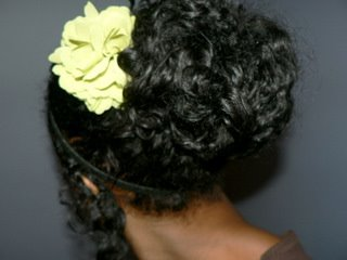 Yet Another Remedy for a Frizzy/Flat Twist-n-Curl