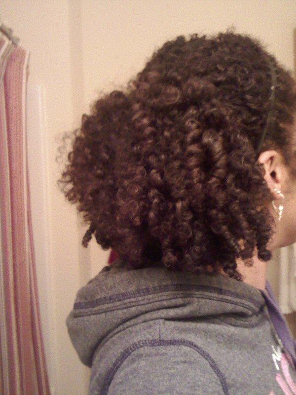 Latoya- Naturally Glam Natural Hair Idol