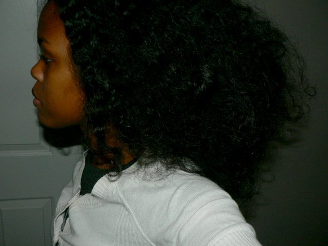 My Best Diana Ross-- Brushed Out Natural Hair