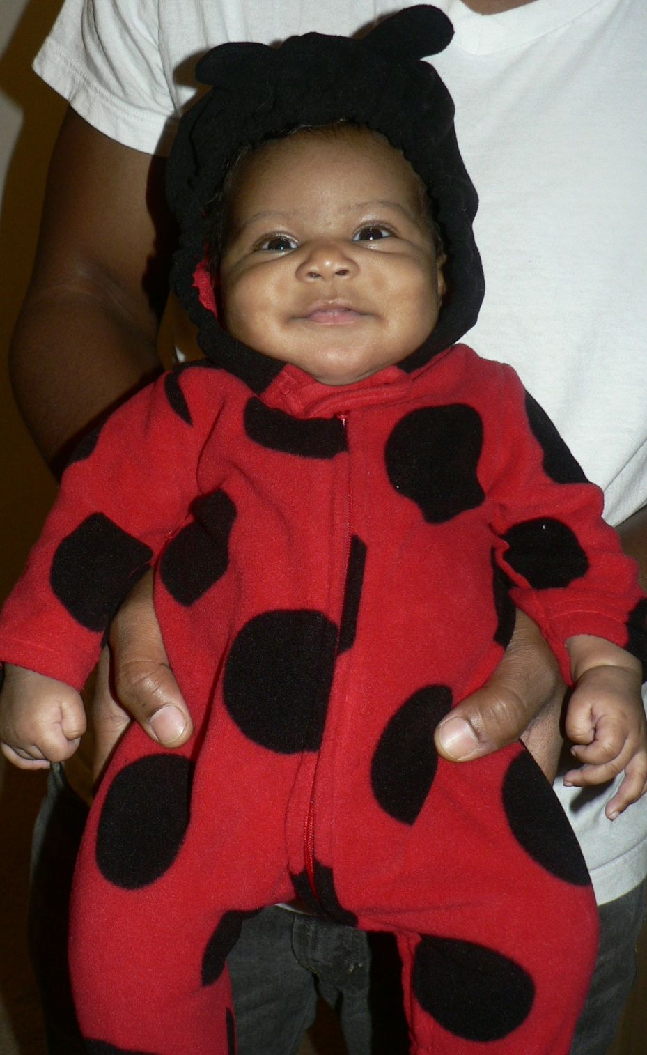 The Angry Little Lady Bug