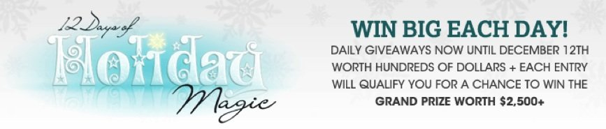12 Days of Holiday Magic!