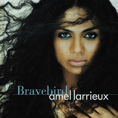 Amel Larrieux's Natural Hair Journey- Exclusive!