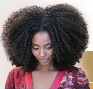 Natural Hair Wigs and Weaves: Would you try it?