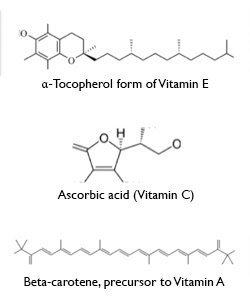 Antioxidants in Hair Care Products