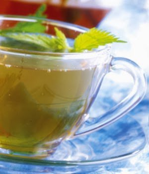 Nettle Tea for Healthy Hair Growth and Thickening
