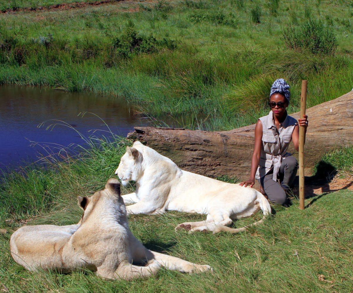 Walking With Lions