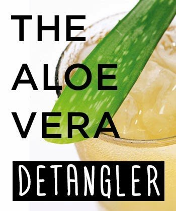 Tip of the Day: Detangle and Define Your Natural Hair With Aloe Vera
