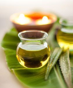 Benefits of Aloe Vera Gel for Hair...According to Science